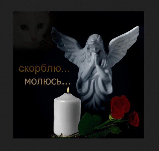 http://content-27.foto.my.mail.ru/mail/feay_66/_deti/i-4237.jpg