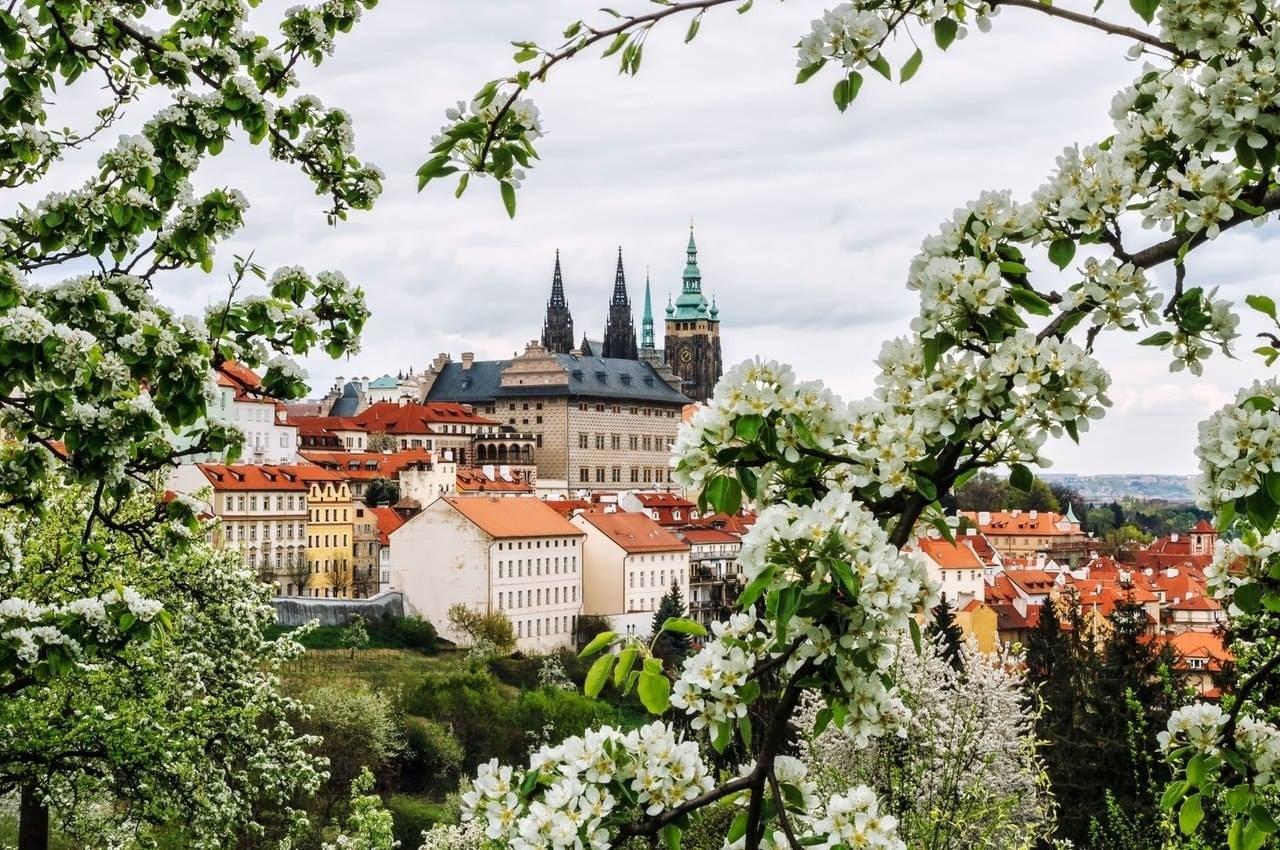 Встречай весну в Праге !