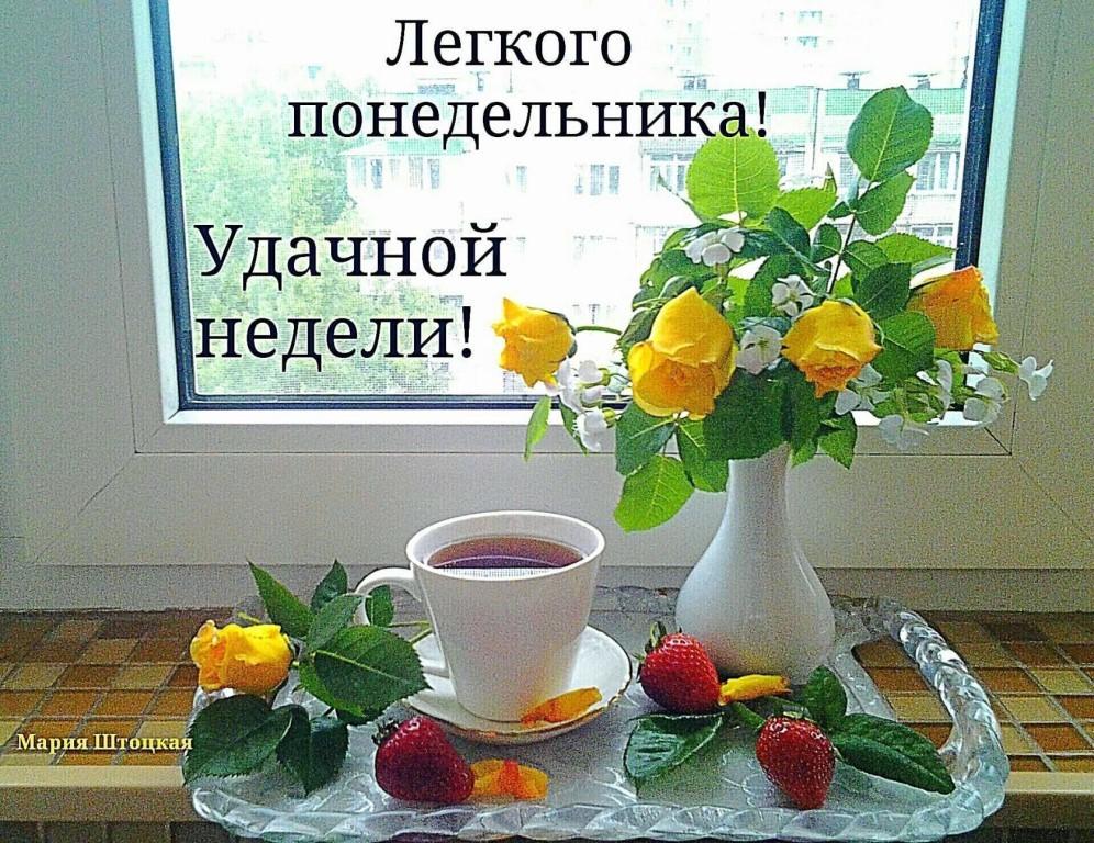 Доброе утро в понедельник картинки красивые необычные и пожелания, лабрадорам