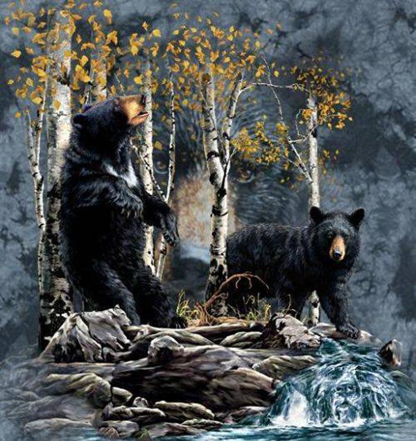 Найдите медведя на картинке